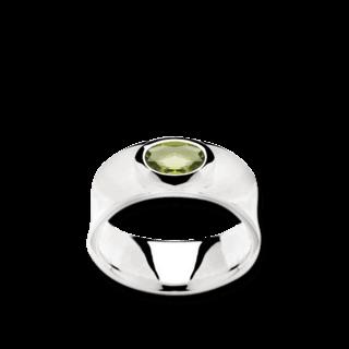 Bastian Ring Faszination Edelsteine 11645