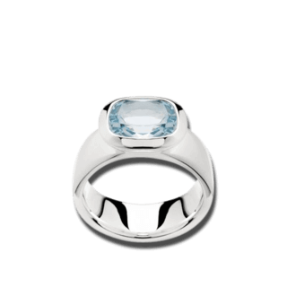Bastian Ring Faszination Edelsteine 11651