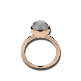 Bastian Ring Faszination Edelsteine 12081