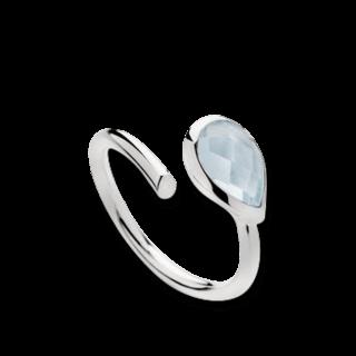 Bastian Ring Faszination Edelsteine 12417