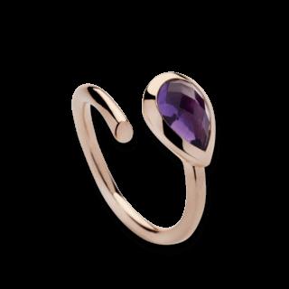 Bastian Ring Faszination Edelsteine 12420