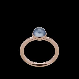 Bastian Ring Faszination Edelsteine 12641