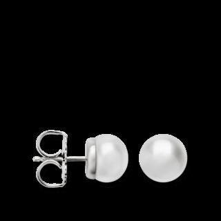 Bastian Ohrstecker Silber & Perlen 12603