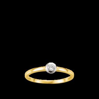 Brogle Atelier Ring Classic Elements FA888G/SI