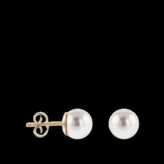 So wird der Wert einer echten Perle ermittelt e0a4487a76