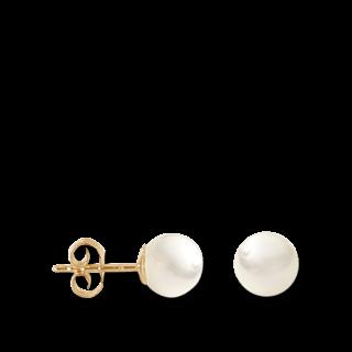 Brogle Atelier Ohrstecker Timeless Pearls 311.1600
