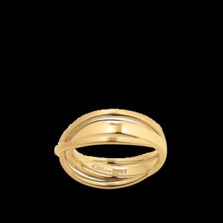 Brogle Atelier Ring True Gold - wahre Goldstücke 55591111R/3-585GG