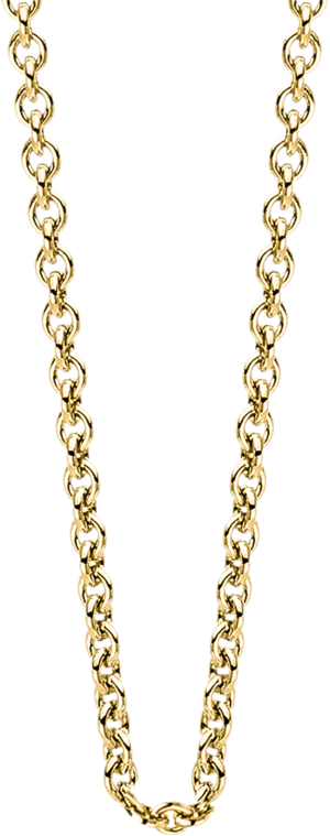 Halskette Brogle Selection Basic aus 585 Gelbgold