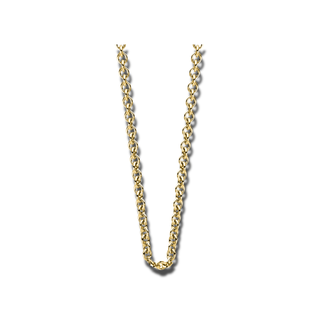 Halskette Brogle Selection Basic aus 585 Gelbgold bei Brogle