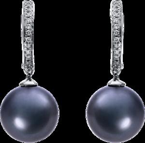 Creole Brogle Selection Basic Perlen aus 750 Weißgold mit 2 Tahiti-Perlen