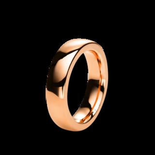 Brogle Selection Ring Basic 1B838R8