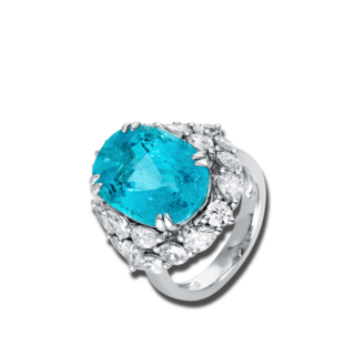 Brogle Selection Ring Exceptional 1P912W8