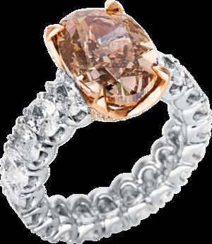 Ring Brogle Selection Exceptional aus 750 Weißgold und 750 Roségold mit 60 Brillanten (11,31 Karat)