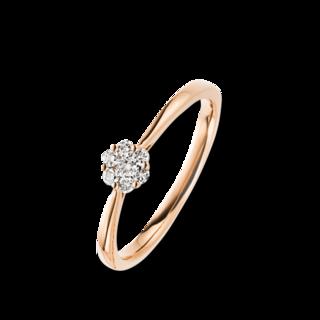 Brogle Selection Ring Illusion 1B785R8