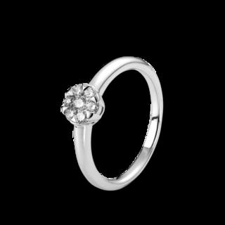 Brogle Selection Ring Illusion 1C056W8