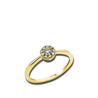 Brogle Selection Ring Illusion 1V451G8