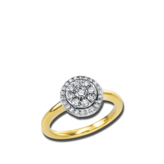 Brogle Selection Ring Illusion 1V669GW
