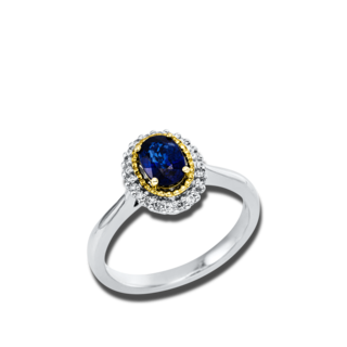 Brogle Selection Ring Royal 1V548GW
