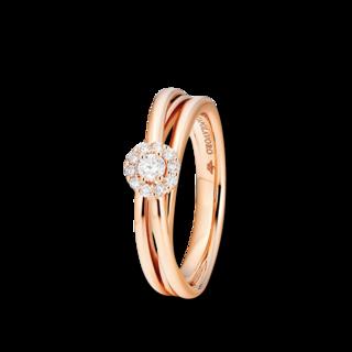 Capolavoro Ring Magnifico RI9BRW02731