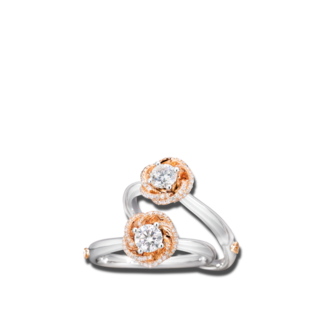 Capolavoro Solitairering Rose Dream RI8BRW08011.0.33TW-VS-M