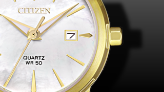 Citizen Basic Damen
