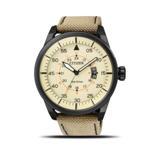 Citizen Herrenuhr Aviator AW1365-19P