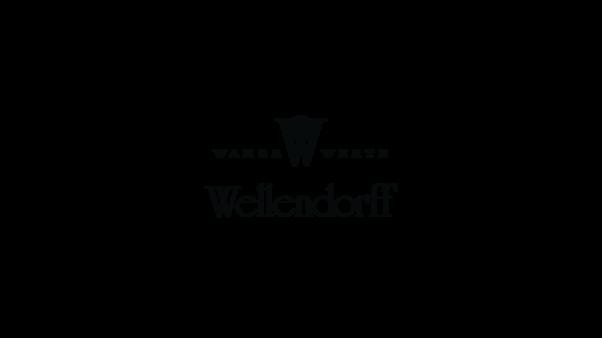 Die Colliers von Wellendorff