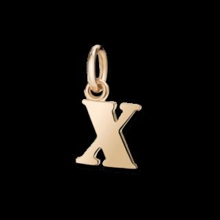 Dodo Charm Buchstabe X (groß) DMB2027-LETXL-0009R