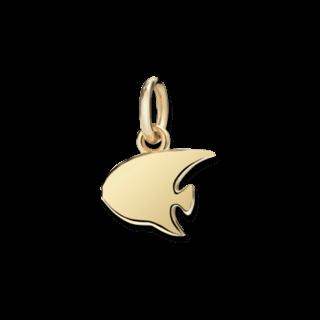 Dodo Charm Kaiserfisch (klein) DM95002-ANGES-000OG