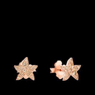 Dodo Ohrstecker Seestern Diamant DOHSTP/9/BR
