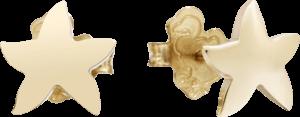 Ohrstecker Dodo Seestern aus 375 Roségold