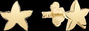 Ohrstecker Dodo Seestern aus 750 Gelbgold