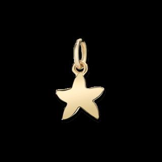 Dodo Charm Seestern (klein) DM95027-STARS-000OG