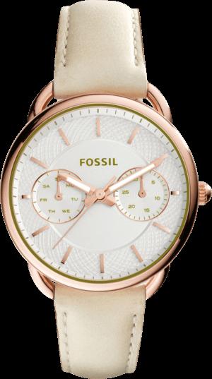 Damenuhr Fossil Tailor mit silberfarbenem Zifferblatt und Kalbsleder-Armband