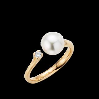Gellner Ring H2O 5-22006-02