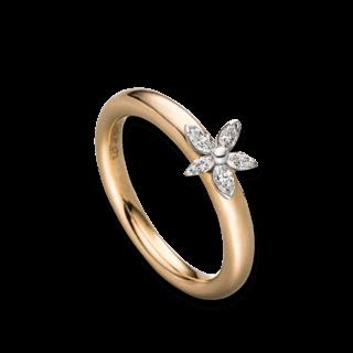 Schaffrath Ring Exklusiv NAV03-R-GG-0.24GVS