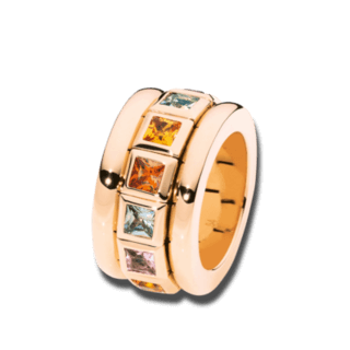 Tamara Comolli Ring Curriculum Vitae Indian Summer R-CV77-IS-RG