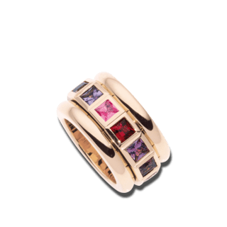 Tamara Comolli Ring Curriculum Vitae Wildberry R-CV77-WB-RG